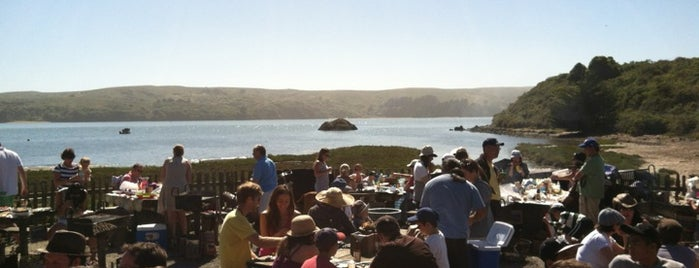 Hog Island Oyster Farm is one of Traveling  Outside SF.