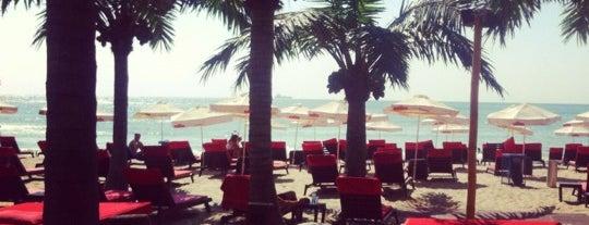 Rappongi Beach is one of Varna's best.