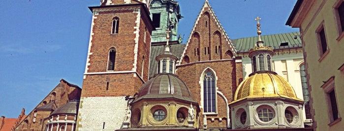 Bazylika archikatedralna św. Stanisława i św. Wacława is one of Carl : понравившиеся места.
