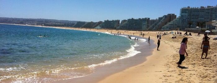 Playa Internacional is one of Walter : понравившиеся места.