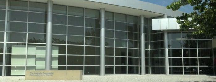 Bishop Lynch High School is one of Dennis : понравившиеся места.