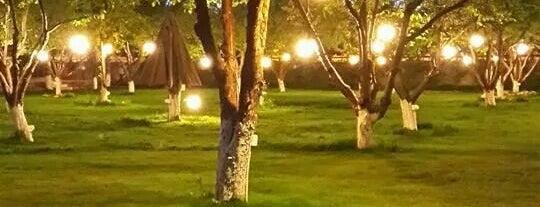Incek Lilyum Restaurant & Wedding is one of özdemir'in Beğendiği Mekanlar.