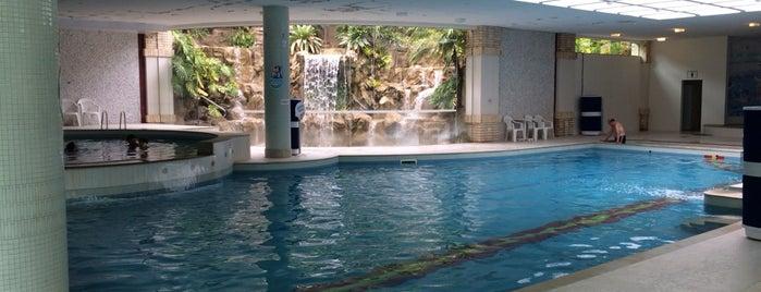 Piscinas e Hidro - Fazzenda Park Hotel is one of Renato'nun Beğendiği Mekanlar.