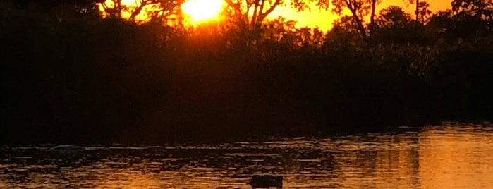 The Okavango Delta is one of Botswana.