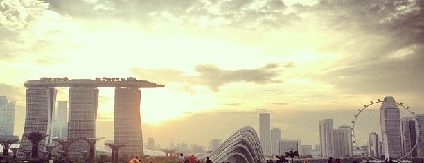 Marina Barrage Roof Top is one of Best of Singapore.