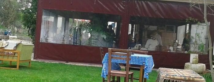 Zıp Zıp Cafe is one of bodrum'da cocukla gidilecek mekanlar.