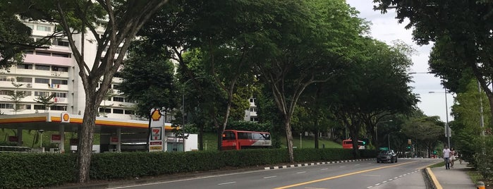 Bus Stop 11021 (Aft Queenstown NPC HQ) is one of Sg.