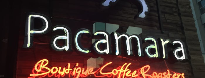Pacamara Boutique Coffee Roasters is one of Asha 님이 저장한 장소.