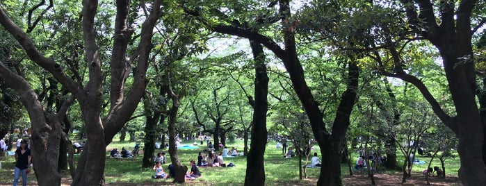 Yoyogi Park is one of Travel Guide to Tokyo.