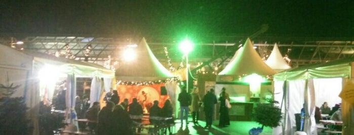 I BELIEVE™ Christmas Village is one of สถานที่ที่ Gabriel ถูกใจ.