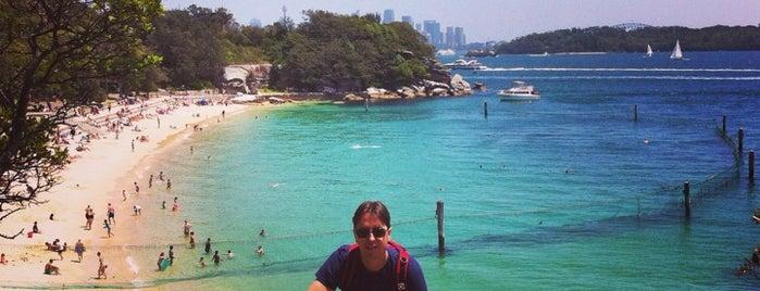Shark Beach is one of Sydney.