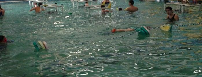 La Petite Baleen Swim Schools is one of anand'ın Beğendiği Mekanlar.