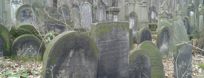 Cmentarz Żydowski / Jewish Cemetery is one of Varsó.