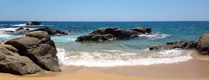 Platja Can Cristus is one of Playas de España: Cataluña.
