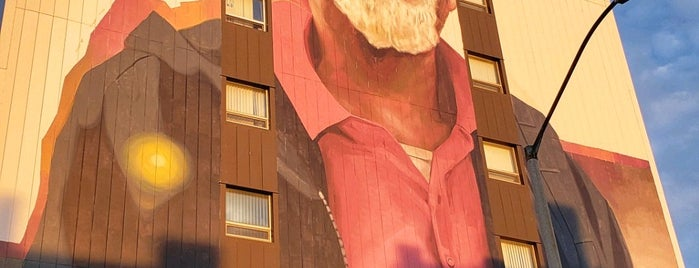 Rudy Daniels Mural by Evoca1 is one of Murals of Erie.