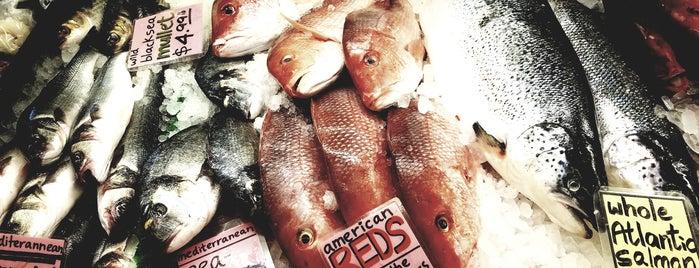 Kate's Fish is one of John'un Beğendiği Mekanlar.