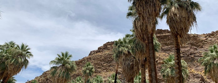 Palm Canyon Trails is one of Palm Springs.
