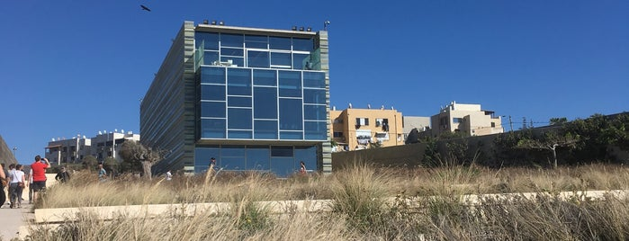 The Peres Center For Peace is one of Tel Aviv To Do.