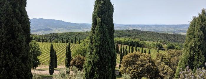 Poggio Antico is one of Montalcino.