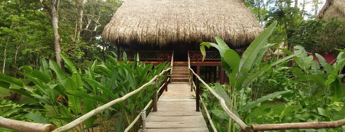 las guacamayas is one of Orte, die Jorge gefallen.