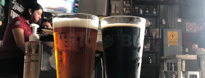 Buqui Bichi Brewing is one of VIAJES 2.
