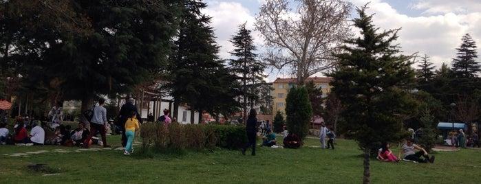 Sümer Park is one of _D_O_Ğ_A_N_ : понравившиеся места.