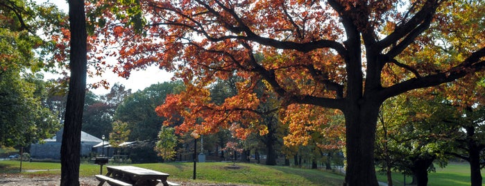 Cunningham Park is one of Fall Foliage in NYC Parks.