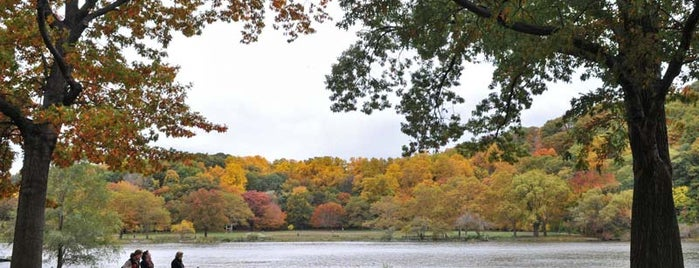 Inwood Hill Park is one of Fall Foliage in NYC Parks.