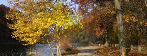 Clove Lakes Park is one of Fall Foliage in NYC Parks.