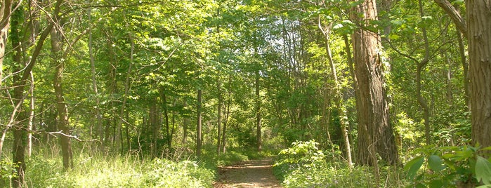 Orchard Beach is one of Go Explore: The Best Hiking Trails in NYC.
