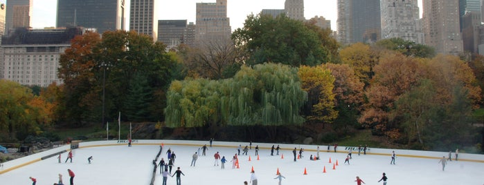 Ice Skating in NYC Parks