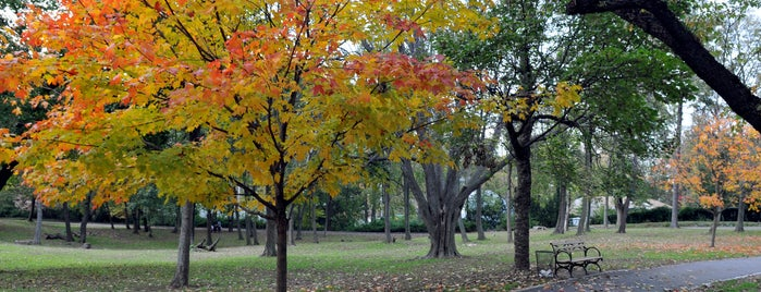 Arthur Von Briesen Park is one of Fall Foliage in NYC Parks.