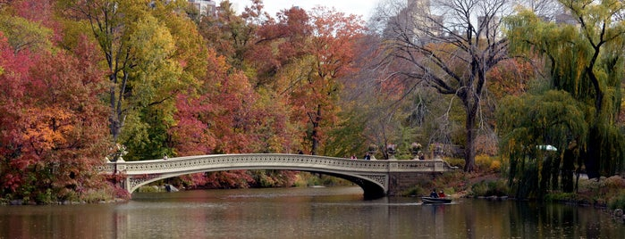 Central Park is one of Fall Foliage in NYC Parks.