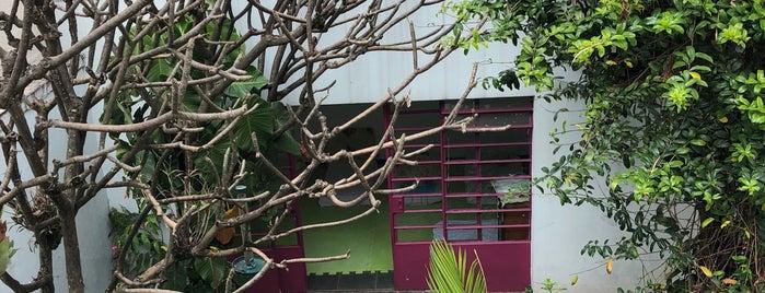Casa de Viver is one of Locais curtidos por Vanessa.
