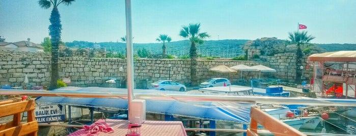 Teos Keyif Balık Evi is one of İzmir.