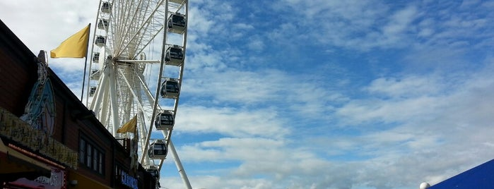 The Seattle Great Wheel is one of Alyssa's Seattle visit.