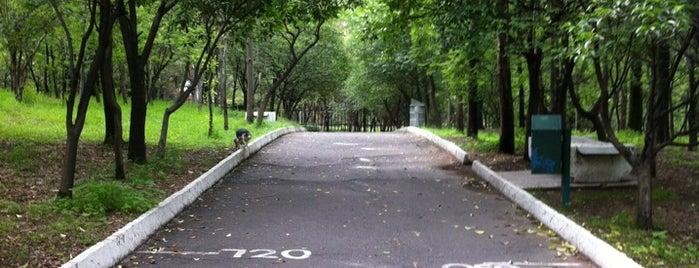 Parque Ecológico Las Águilas is one of Ciudad de México y alrededores.