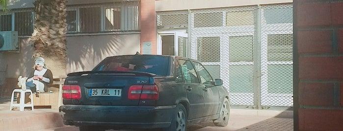 altin nakis is one of NAKIŞ İMALATÇILARI - TURKEY.