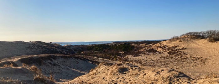 The Walking Dune Trail is one of long island.