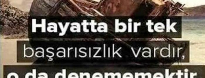 Türkiye İş Bankası Ellialtilar Şubesi is one of Pınarさんのお気に入りスポット.
