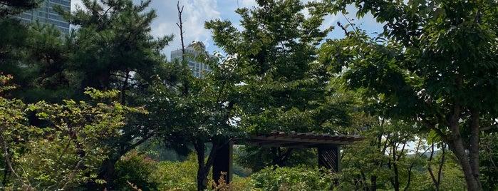 Seokcheon Lake Walking Trail is one of South Korea 🇰🇷.