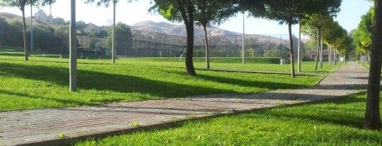 Yakacık Mesire Alanı is one of Piknik.
