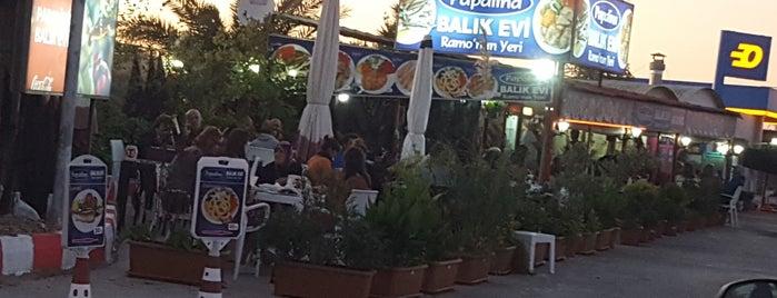Papalina Balık Evi is one of Tempat yang Disukai Orkun.