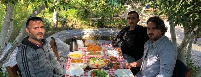 Kuytu Bahçe is one of Tempat yang Disukai gizem.