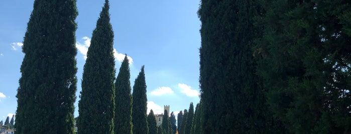 Viale dei Cipressi is one of Venue da sistemare.