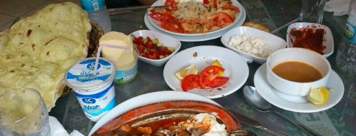 Kanatci Temel Usta is one of Posti che sono piaciuti a Elif.