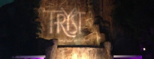 Tryst Night Club is one of Lugares favoritos de Traci.