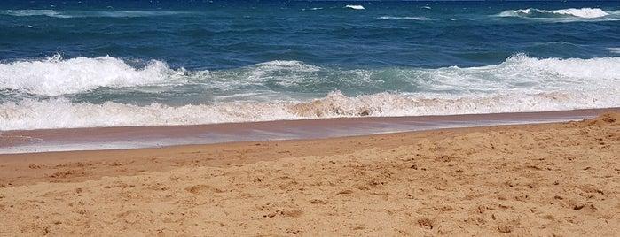 Umhlanga Beach is one of Lieux sauvegardés par Naomi.