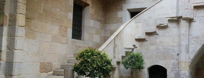 Institut d'Estudis Ilerdencs is one of Lleida.