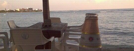 La Buena Vida is one of Tulum/Cancun.
